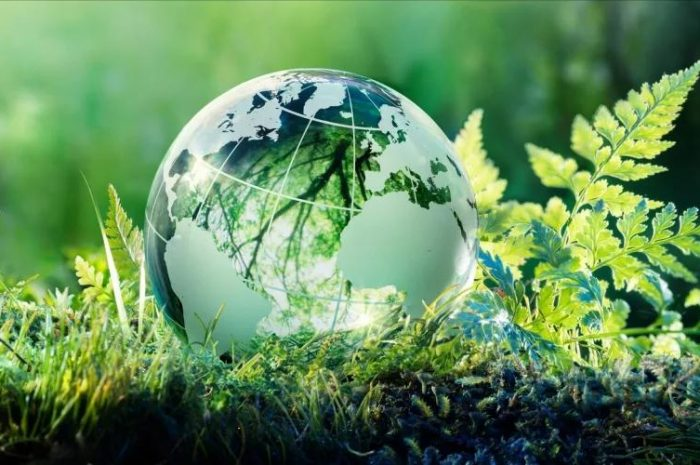 Экологичная жизнь: в своем темпе и без фанатизма