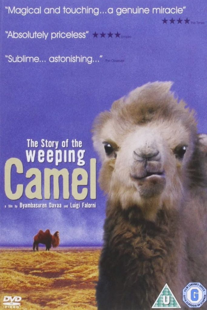 Афиша фильма «История плачущего верблюда»